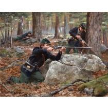 Berdan's Sharpshooters, Summer-Fall 1863